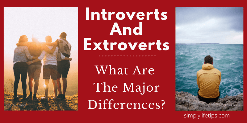 What Are The Major Differences Between Introverts And Extroverts?