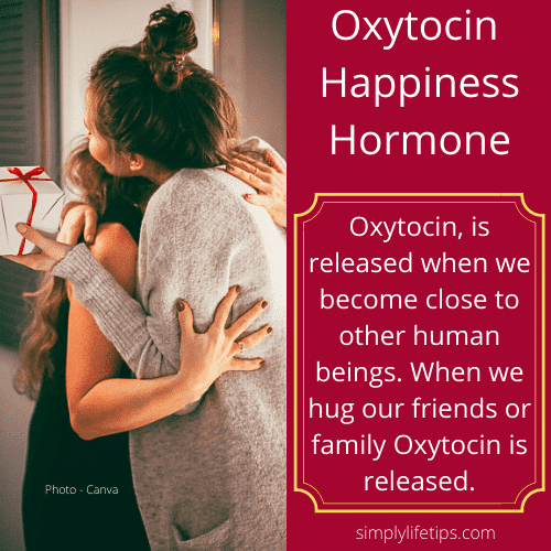 Hug Oxytocin Happiness Hormone