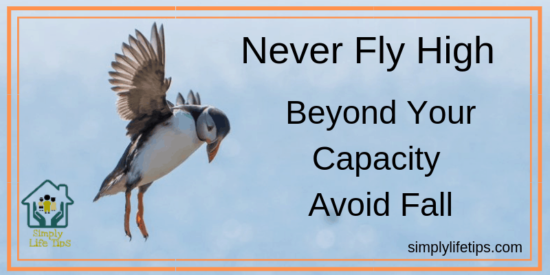 Never Fly High Beyond Your Capacity |