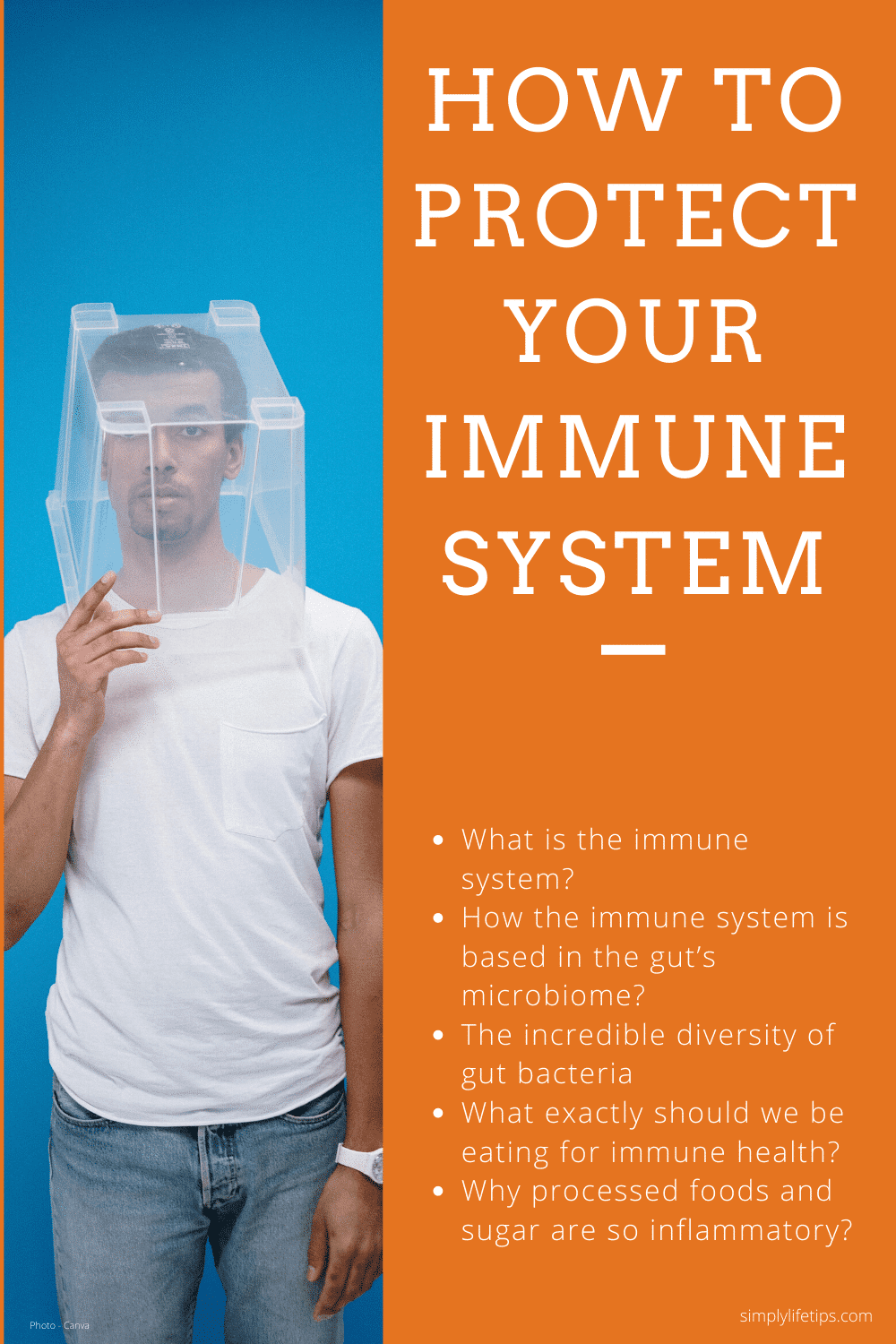 Protect Your Immune System